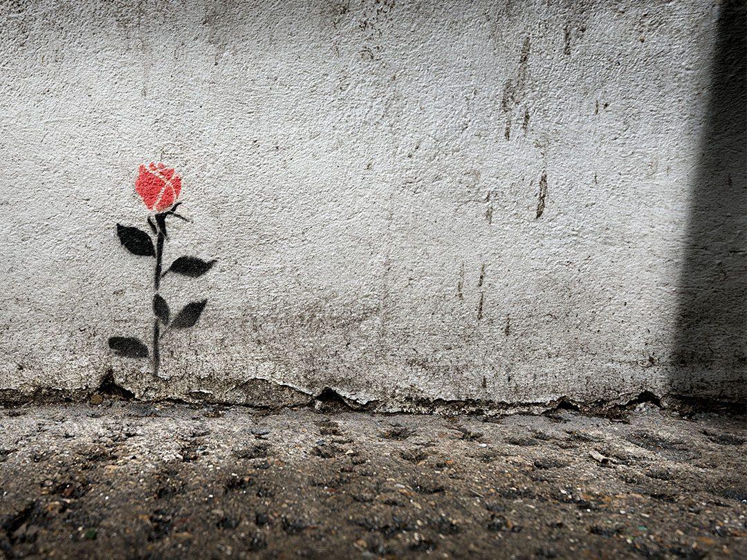 Come Abbattere Un Muro muri | guadagni ortopedia sanitaria ausili